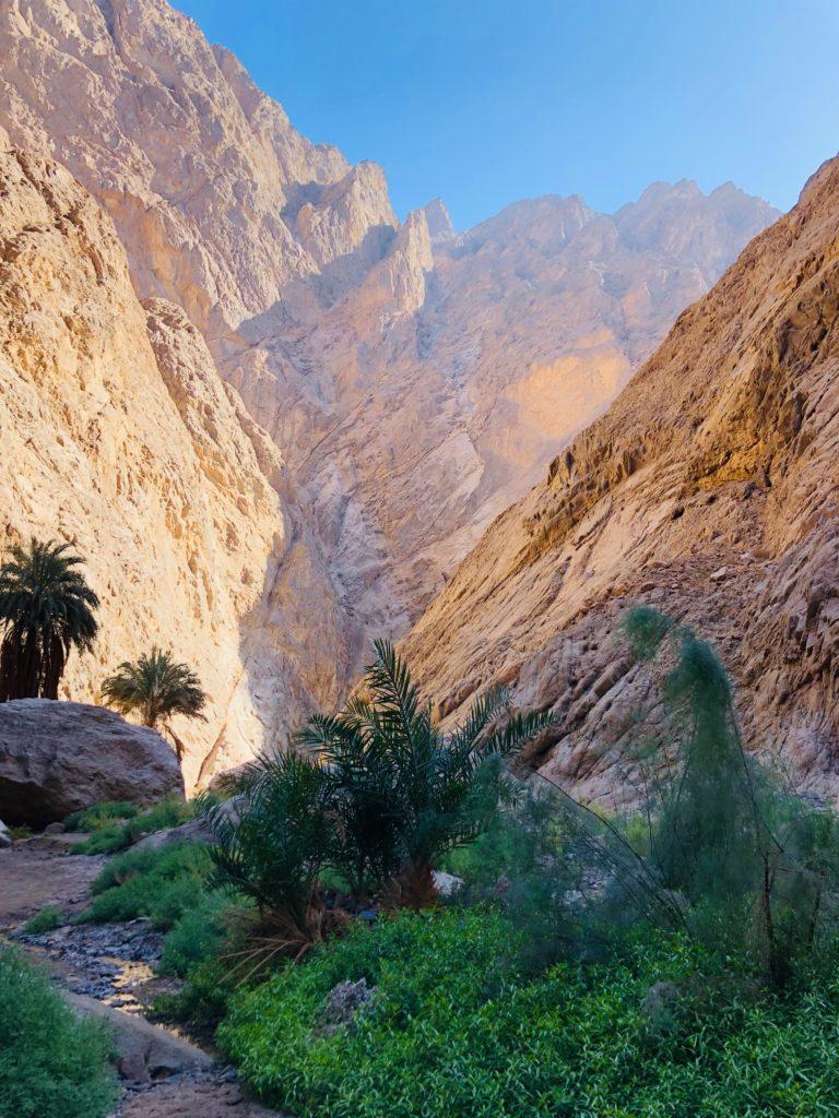 wadi tayyeb esm